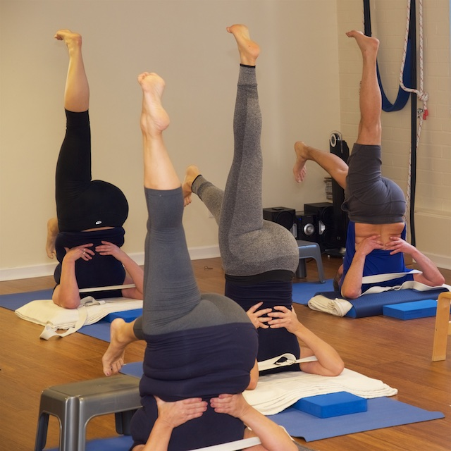 Teachers asanas demonstration shoulder stand